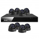 8CH Video Outdoor Security System with 8 Weatherproof&Vandalproof Sony CCD Surveillance Cameras